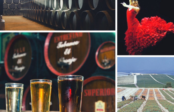 Jerez: Bodegas, Tabancos, Flamenco, Viñas...