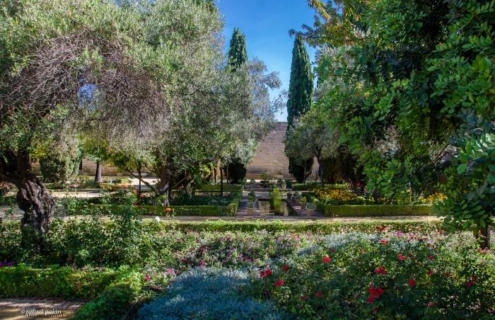 Alcázar de Jerez. Jardines. Fotografía: Rafael Galán